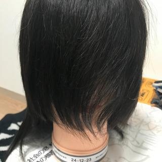 国家試験 美容師実技試験 課題 カットウィッグ
