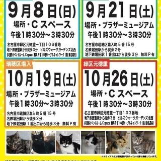 10/26(土) 名古屋市緑区徳重にて譲渡会 アイラの会