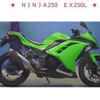 ★美車 NINJA250 EX250L 人気のカワサキカラー 業...