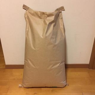 お米 玄米 令和元年産 愛知県産 あいちのかおり 30kg