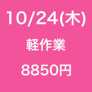 【無断欠勤厳禁】単発/日払い/松戸市/工場での作業/10月24日