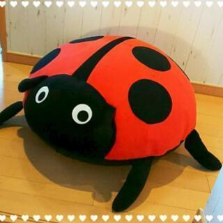 大きな大きな【てんとう虫】