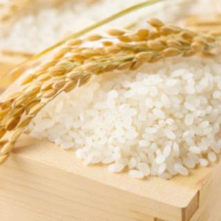 平成30年度産 玄米 30kg 古米