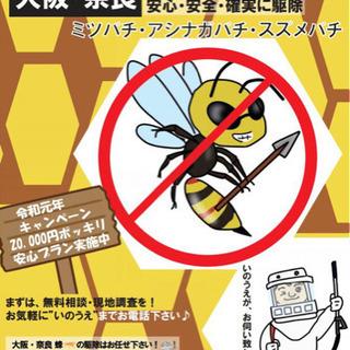 🐝蜂の駆除 (大阪・奈良)  ただいまキャンペーン中♪