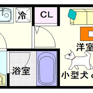 【スプランディッド難波】4号タイプ!1Kタイプ!猫も飼っていいねん!