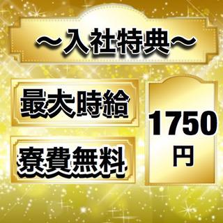 【No.35】最大時給1750円!!寮費無料!!応募殺到!!