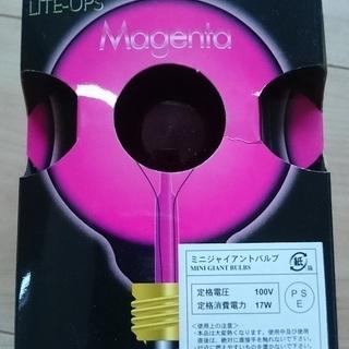 ■カラー電球 ピンク