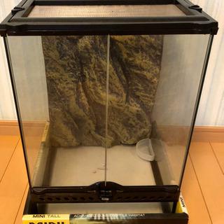 ジェックス グラステラリウム3045  爬虫類飼育用ケージ