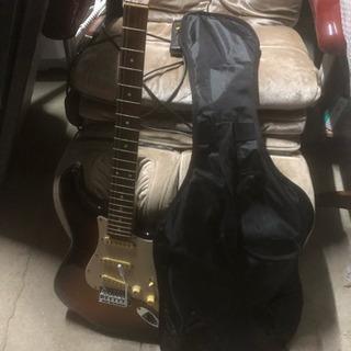 Photo Genic 初心者用ギター
