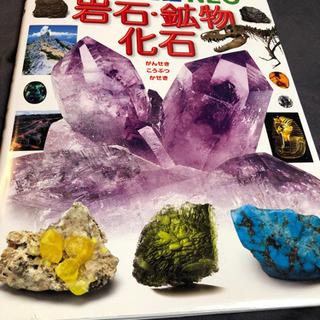 小学館の図鑑NEO 岩石・鉱石・化石