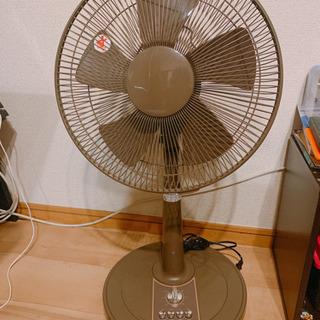 ブラウン扇風機