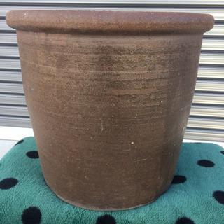 ‼️ 植木鉢  ‼️