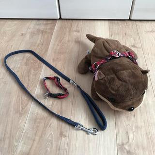 犬用 リード 首輪 3点セット