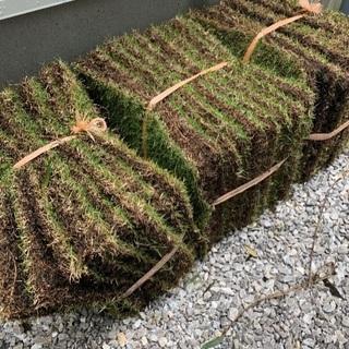 芝生 TM9 3平米分