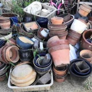 🌸植木鉢🌸全部無料🌸早い者勝ち❗