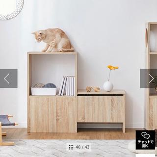 収納棚 キャットウォーク付き壁面収納 シェルフ 木製(展示品★美品)