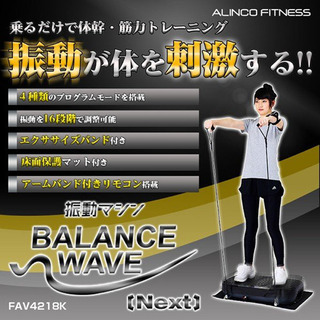 美品!ALINCO FITNESS balance wave
