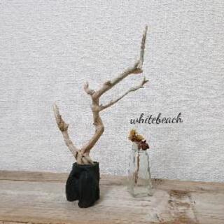 流木のオブジェ・アート。