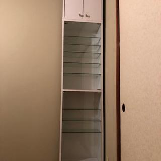 ガラス2枚扉コレクションケース
