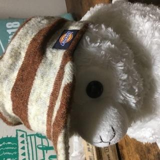 冬用ジュニア帽子(Dickies)