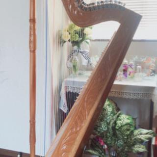 アルパ(ハープ)教室!中南米の民族楽器です
