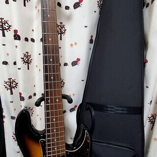 Xotic XJ-1t 5st 5弦ベース アクティブ 純正ケー...