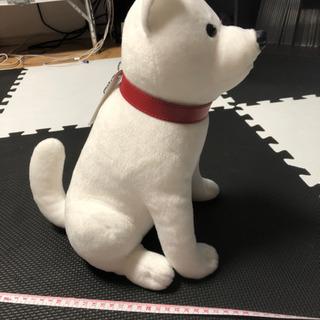 しゃべる お父さん犬 非売品 − 愛知県