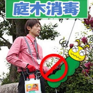 庭木の消毒 庭木を害虫や病気から守る!見積無料