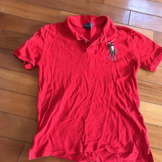 POLO ポロシャツ