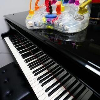 ピアノレッスン      生徒募集