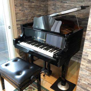 リアル ストリングス グランドピアノ