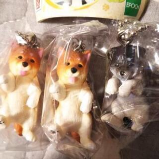 ☆犬のキーホルダーセット☆