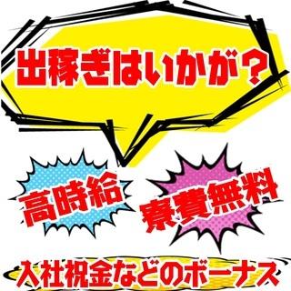 急募開始!《高・条・件》 最短入寮日→11/1 最短入社日→11/6