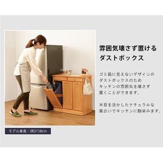 ダストボックス ゴミ箱に見えないキッチンカウンター - 家具