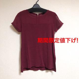 《期間限定値下げ》H&Mファスナー付シースルー切替Tシャツ