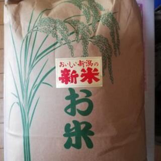 新潟長岡産コシヒカリ玄米5kg :新米