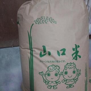 有機無農薬 もち米10kg