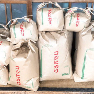 令和元年度  コシヒカリ  10キロ 玄米