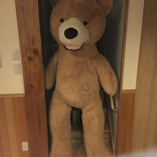 巨大クマさん