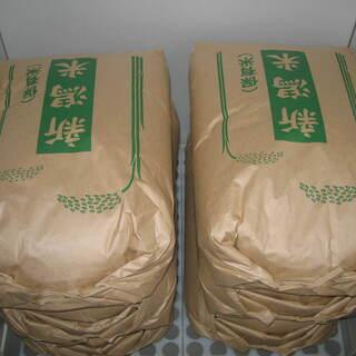 令和元年産新潟コシヒカリ新米20kg