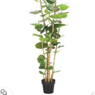 ニトリ人工観葉植物