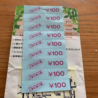 ピクニカ共和国 金券チケット900円分