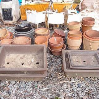 福島発 中島村発 植木鉢 約50鉢 引き取り限定