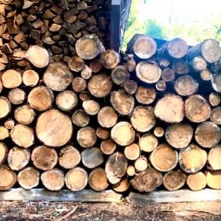 薪ストーブ用 杉玉、ヒノキ玉あります