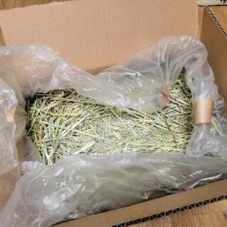✤牧草✤ チモシー(小動物用)5kg