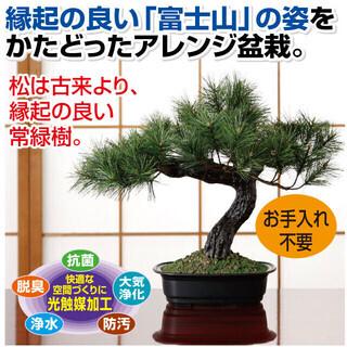 アレンジ盆栽 富士の松 インテリアグリーン フェイクグリーン 【新品】