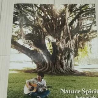 押尾コータロー Nature Spirit ギター譜スコア
