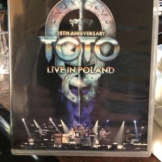 DVD TOTO ライブイン ポーランド 新同。