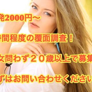 2000〜6000円 約1時間の覆面調査以来 3名様募集