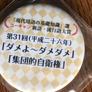 【レア♡】平成流行語大賞バッジ